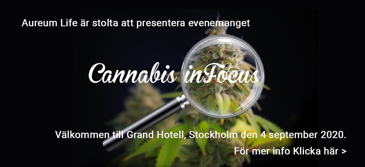 cannabis-in-focus-se2