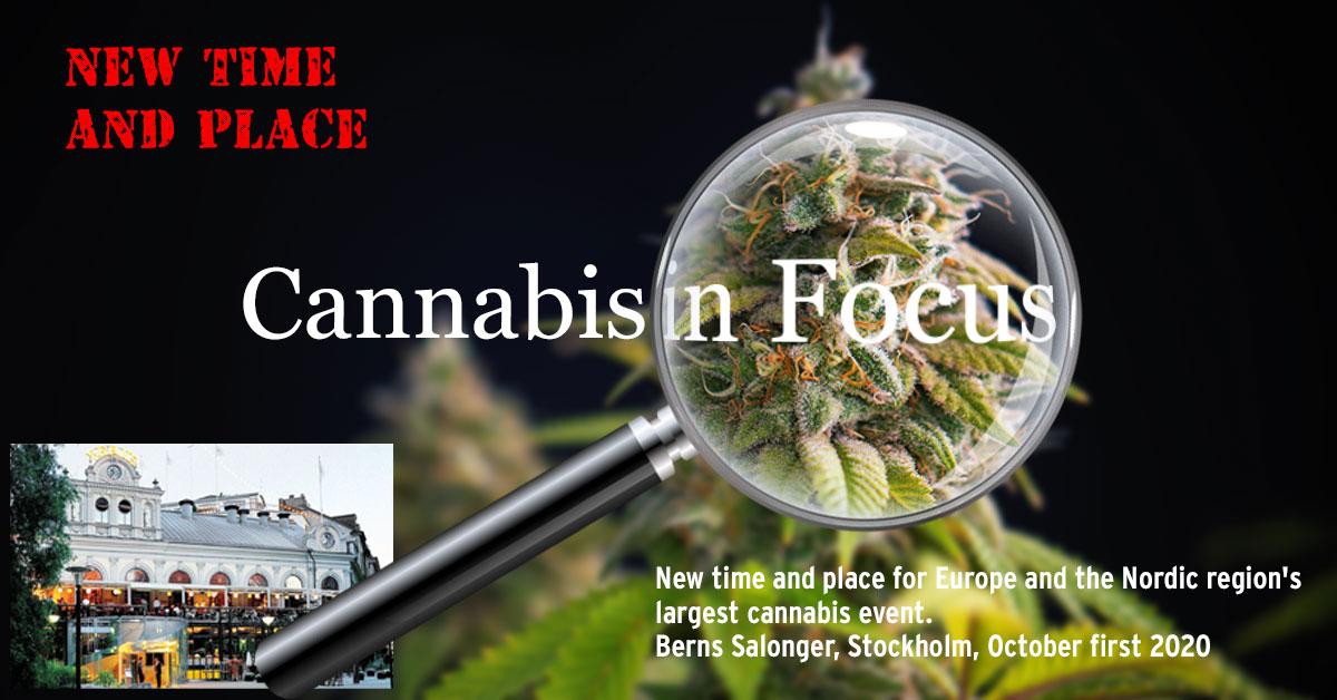 Cannabis-in-focus-berns