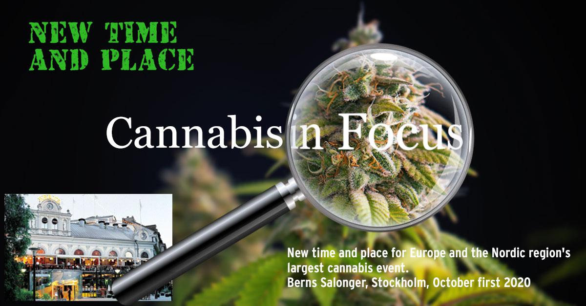 Cannabis_in_focus